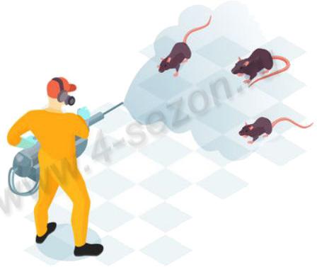 Дератизация от крыс мышей грызунов