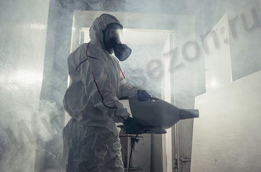 обработка от насекомых горячим туманом